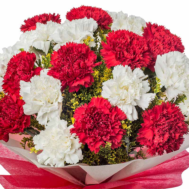 10 Red Carnations and 10 White Carnations Bouquet in Zoomed View