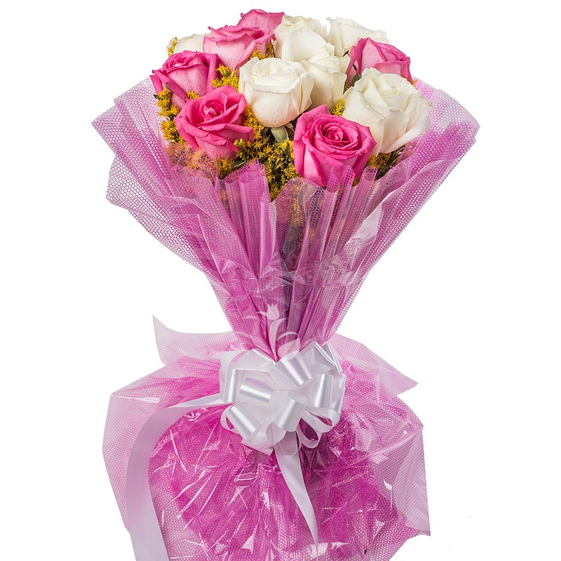 12 Pink and White Roses with Beautiful Packaging