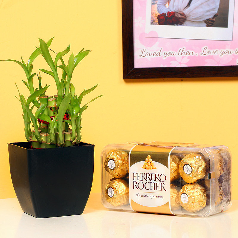 2 Layer Lucky Bamboo with Ferrero Rochers