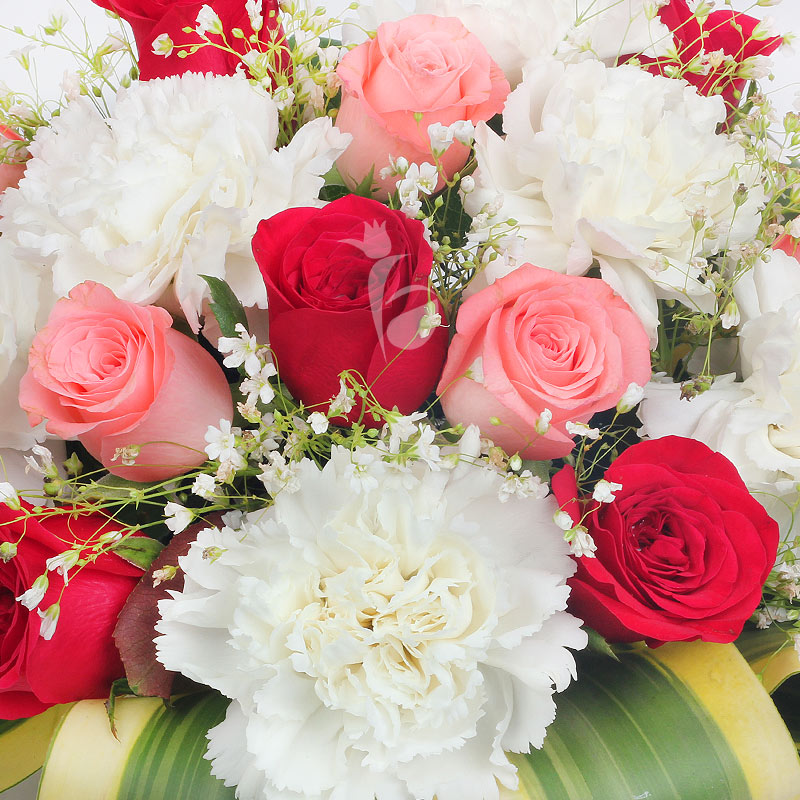 10 Pink Roses 5 Red Roses and 10 White Carnations in Zoomed View
