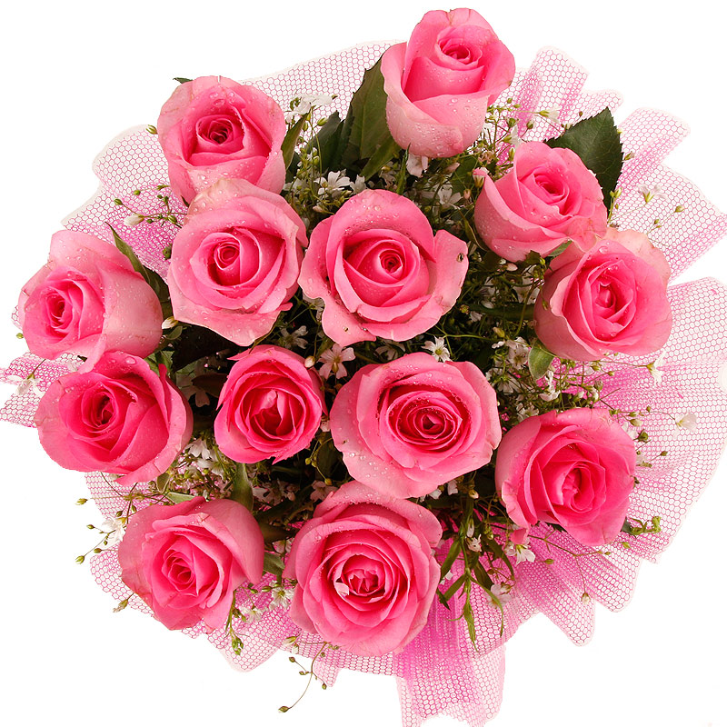 12 Pink Roses Bunch with Top View