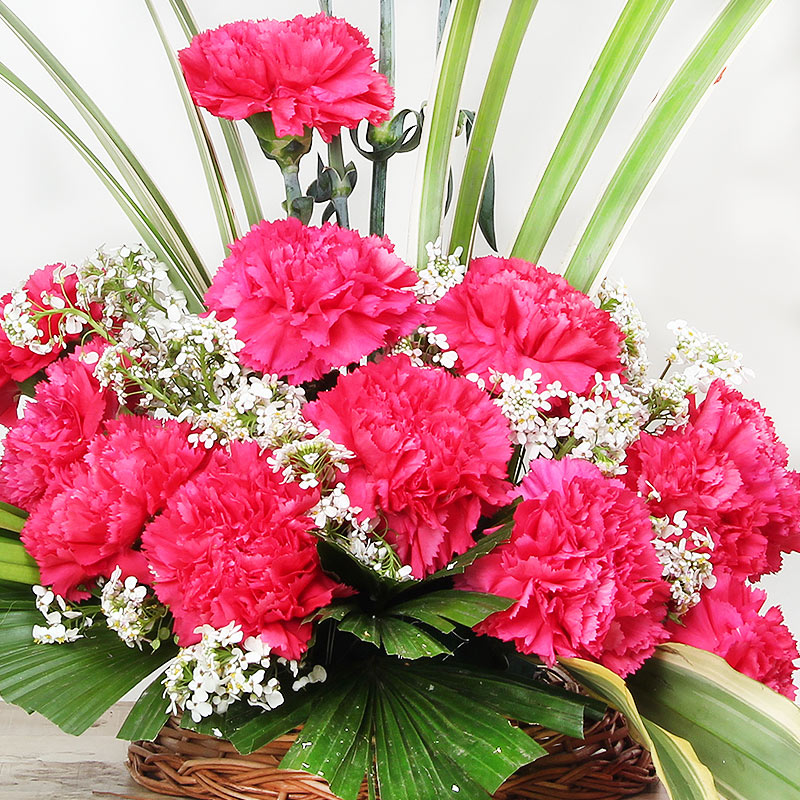 15 Pink Carnations in Basket with Zoomed in View
