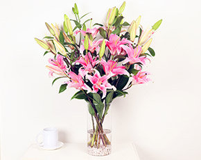 Bunch of Pink Lily