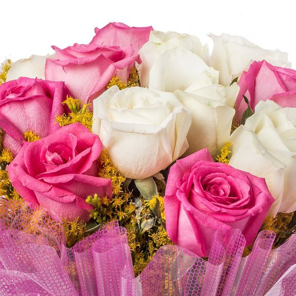12 Pink and White Roses with Zoomed View