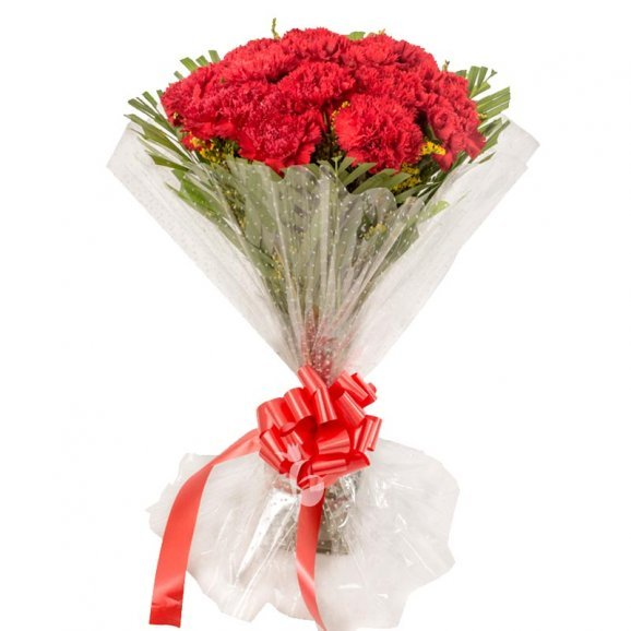 15 Red Carnations Bunch with Front View