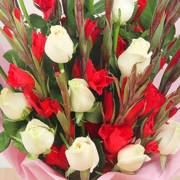 10 White Roses and 10 Red Glads in Zoomed View
