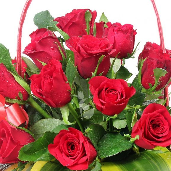 A Basket of 30 Red Roses with a Lovely Ribbon Wrapped with Top View