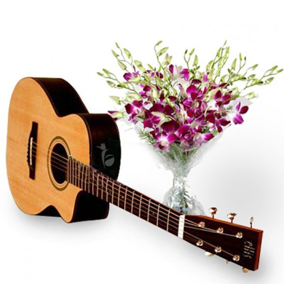 Musical Orchids