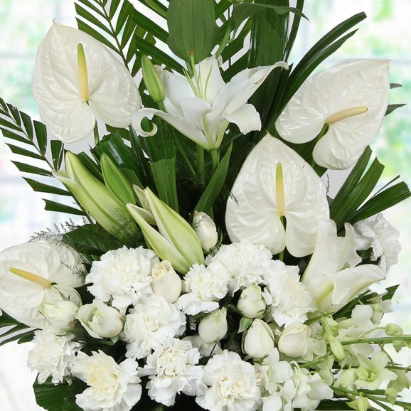 Mixed White Flowers in Zoomed View