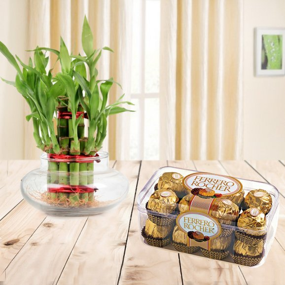 Combo of 16 Ferrero Rocher chocolates and 3 tier lucky bamboo