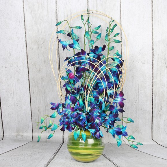 Blue orchids with flower vase