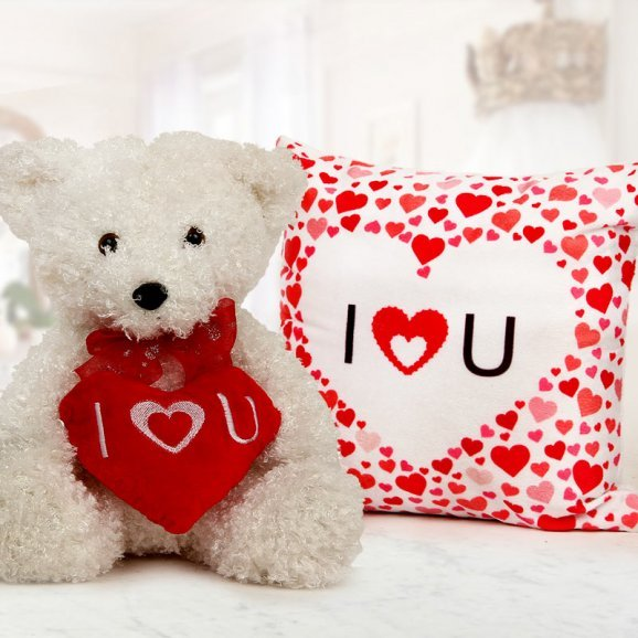 Teddy Gift Delivery, Send Gift Delivery, Order Gift Delivery