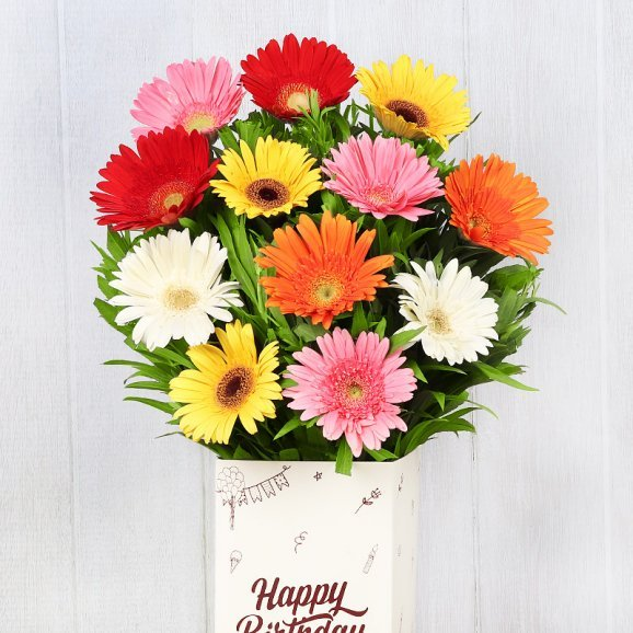 Mixed Color Gerberas in Birthday Box in Zoomed View