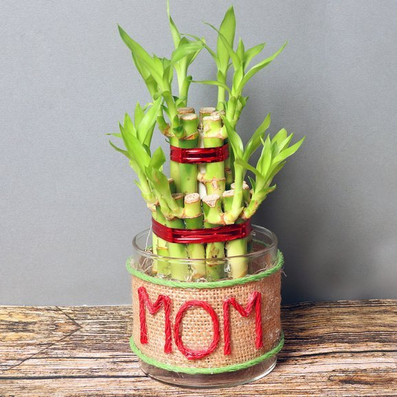 Jute Wrapped Bamboo in Glass Vase for Mom