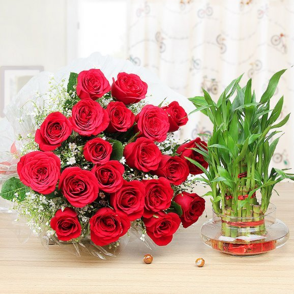 Charming Lucky Love - 25 Red roses bunch and lucky bamboo combo