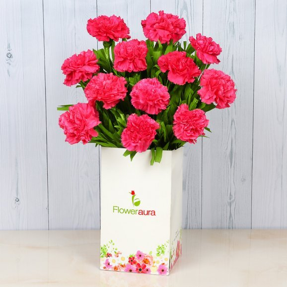Bunch of 12 Pink Carnations