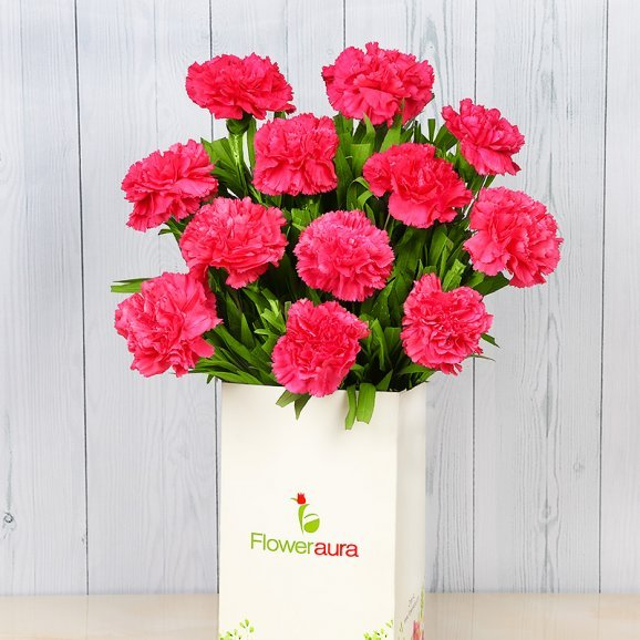 Bunch of 12 Pink Carnations with Closed View