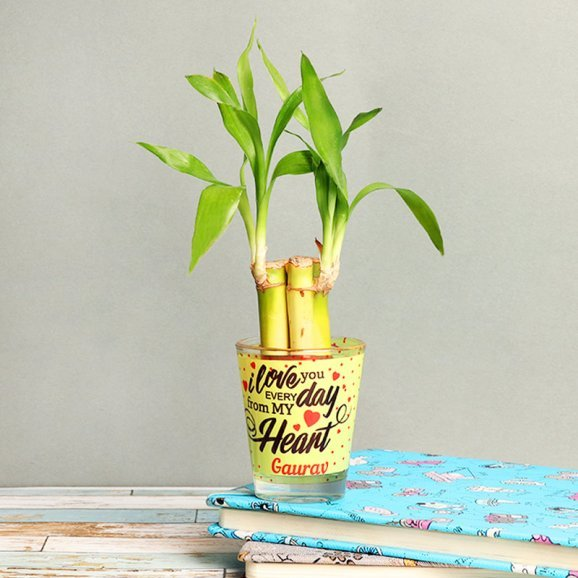 Lucky Bamboo in Personalised Love Shot Glass