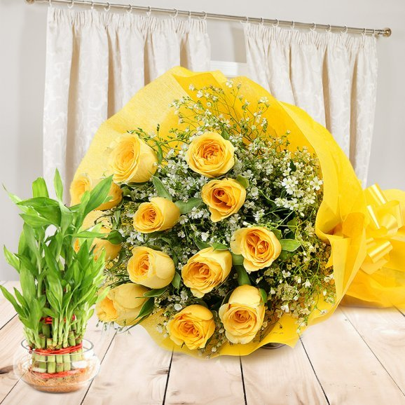 Felicitous Gift Combo - A gift hamper of 12 yellow roses bunch and a 2 tier lucky bamboo