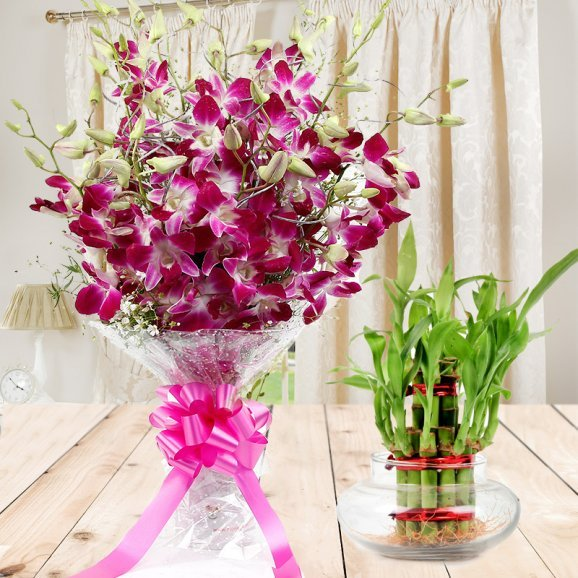 Floral Expressions Combo - A gift hamper of bunch of 6 Orchids and 3 tier lucky bamboo