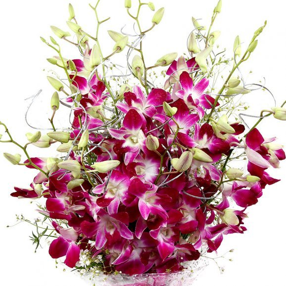 Zoom in view of bunch of 6 Orchids - A gift of Floral Expressions combo