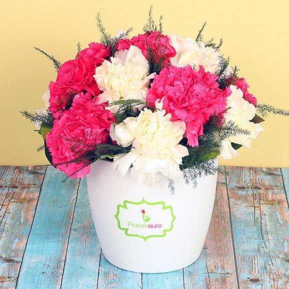 Bunch of Mixed Carnations in White Vase