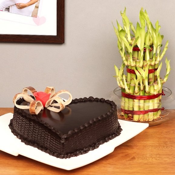 3 Layer Lucky Bamboo with Heart Shaped Chocolate Cake Combo