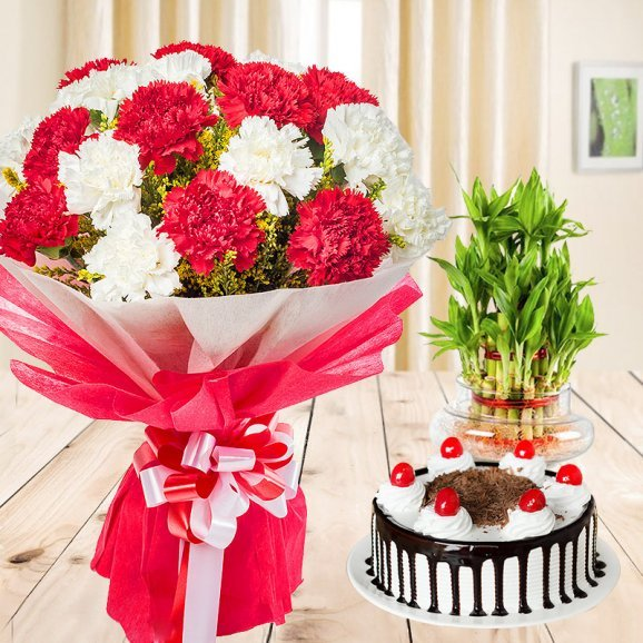 Jaw Dropping Combo - 5 red and 5 white Carnations, half kg Blackforest cake, 2 tier lucky bamboo