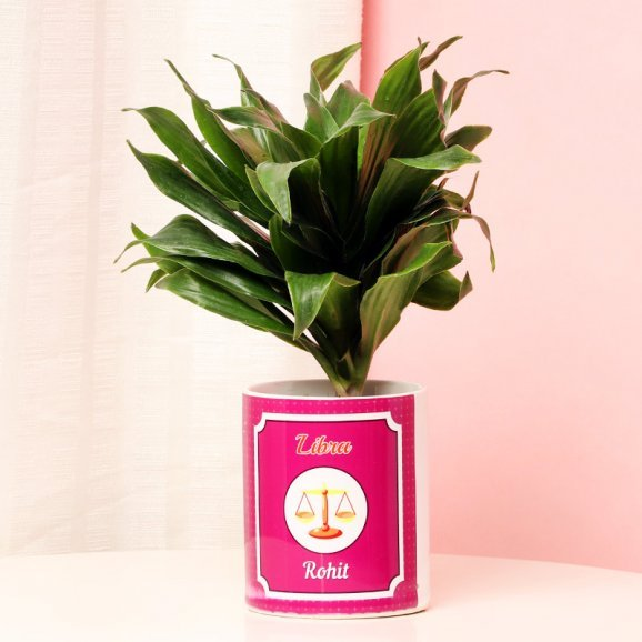 Personalised Dracena Plant for Libra People
