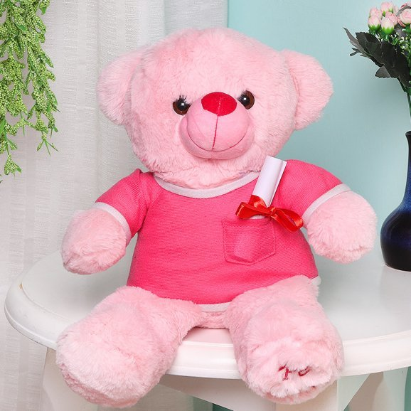 Pink Teddy with a Love Note