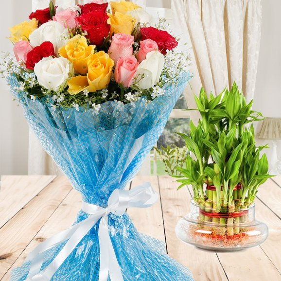 Magic Of Bond - Combo of bunch of 20 mixed Roses and 2 layer lucky bamboo