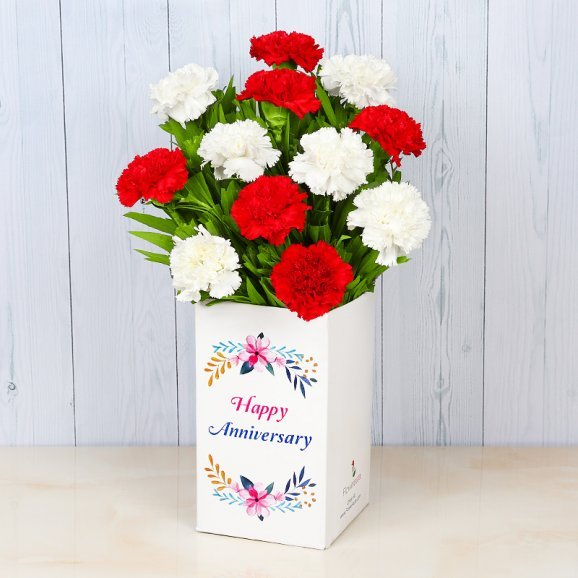 Bunch of 12 Mixed Carnations for Anniversary