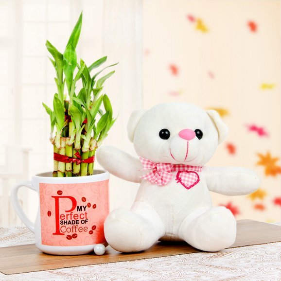 A 6 Inches Teddy and a Mug with a Lucky Bamboo Plant