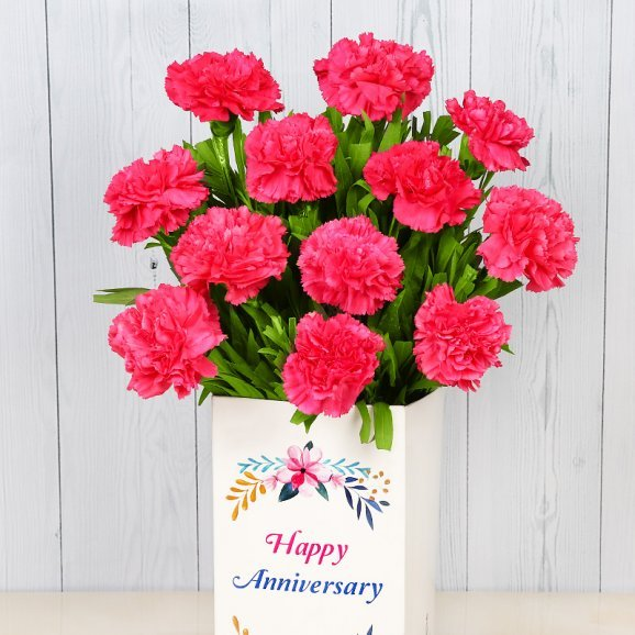 12 Pink Carnations Bunch for Anniversary with Closed View