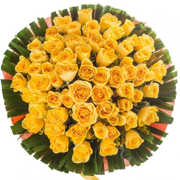 50 Yellow Roses Bunch with Top View