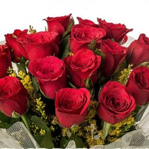 15 Red Roses Bunch with Zoomed View