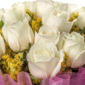 18 white Roses with Zoomed View