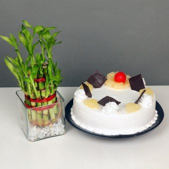 Lucky Bamboo with Pineapple Cake Combo for Mom