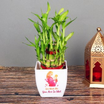 Two Layer Bamboo in White Vase for Mom