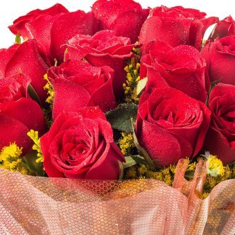 18 Red Roses Bunch with Zoomed View