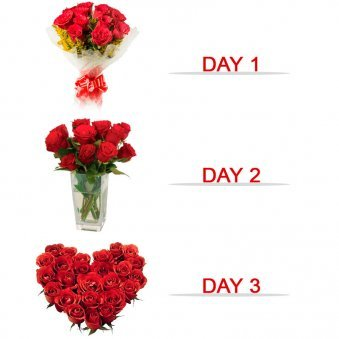 3 Days Of Love V