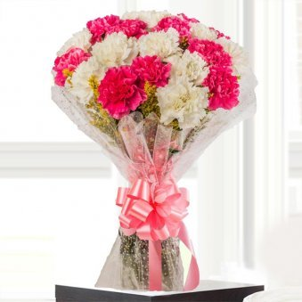 20 Pink and White Carnations Bouquet