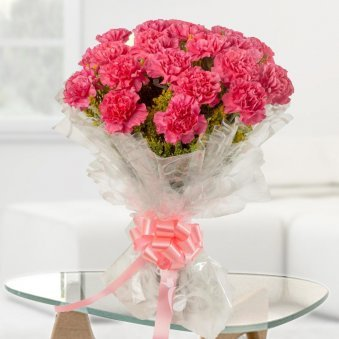 20 Pink Carnations