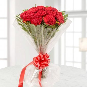 15 Red Carnations Bunch