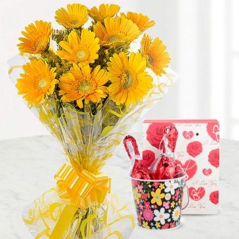 Beautiful Gerberas flowers combo