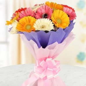 15 Mixed Gerberas with Front View