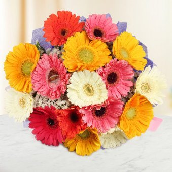 15 Mixed Gerberas Bunch with Top View