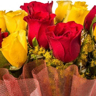 18 Red and Yellow Roses in Zoomed in View