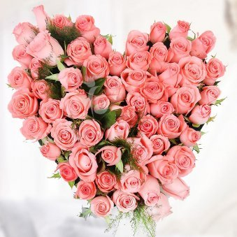 Arrangement of 75 pink roses in the shape of heart