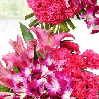 30 Pink Carnations and 20 Orchids with Zoomed View